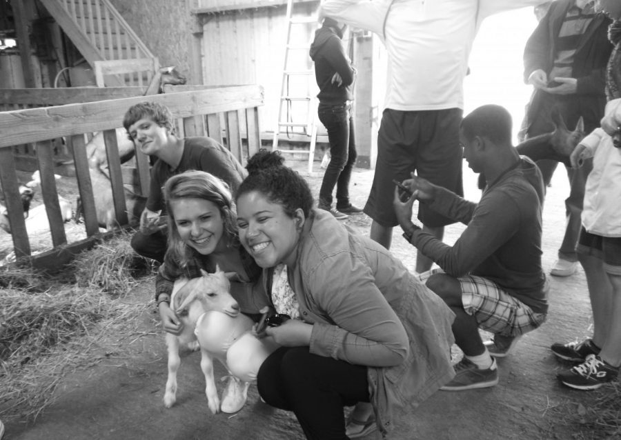 Chantilly graduates Jack Thompson, Kristen Popham and Bre Cherry pose with a goat on a farm in Normandy during their summer trip to France.