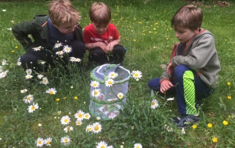 English teacher Jennifer Dean took a 10-year hiatus to raise her three sons, pictures here releasing butterflies.