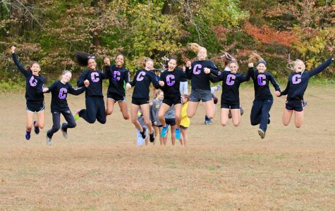 Cross country ends season reaching new heights