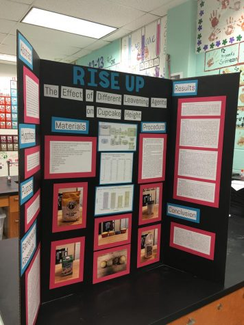 Many of these decorative tri-fold boards filled classrooms around the school as students presented their Science Fair projects to multiple judges. The projects will later be evaluated for awards.
