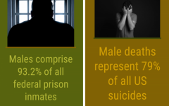 Toxic masculinity harms both males and females by promoting unhealthy standards.